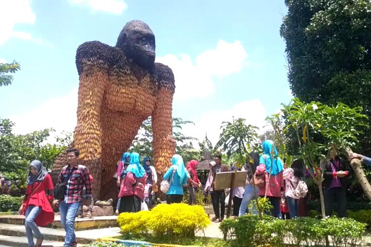 Gorila jagung di Kampoeng Anggrek Kediri, Jawa Timur.(KOMPAS.com/ M AGUS FAUZUL HAKIM)