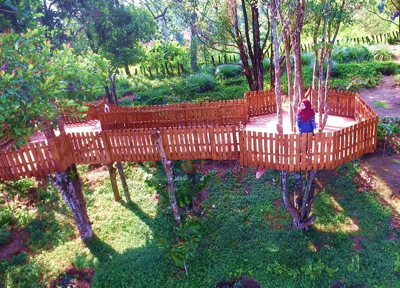 Juni2.1rumah pohon, Rizki Alfian