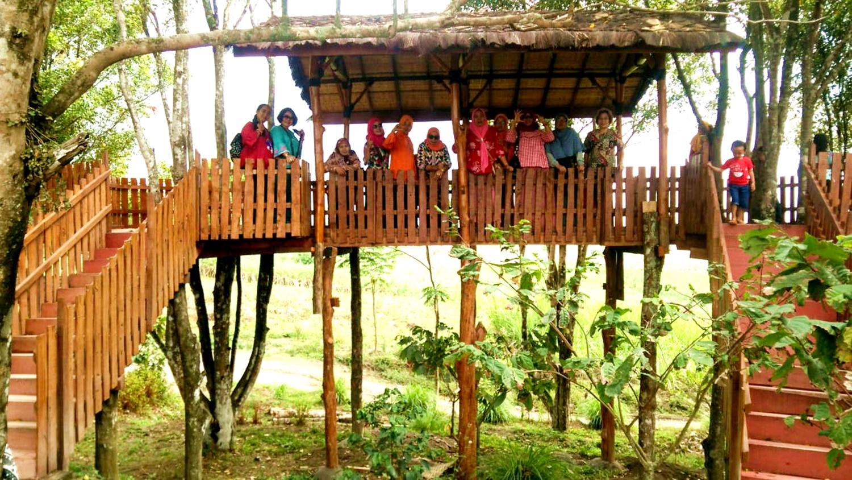 rumah pohon1